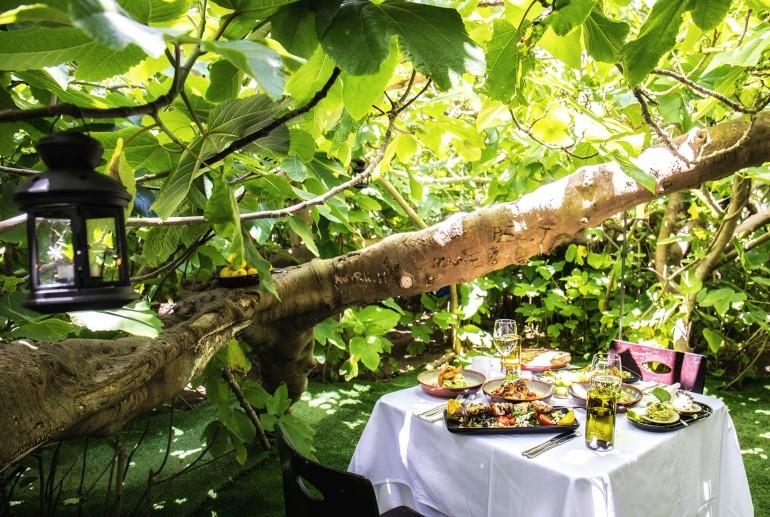 The Enchanted Fig Tree dining experience