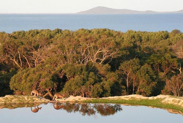 Limosa Rise, Wilsons Promontory, Victoria