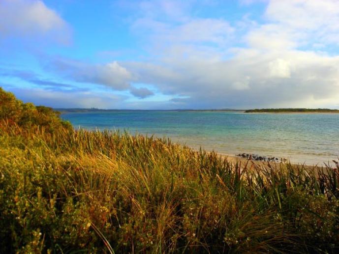 Beachside Retreat West Inlet, Stanley, Tasmania